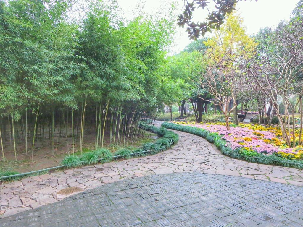 苏州留园春夏秋冬风景