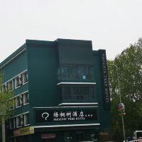 北京梧桐树亚博体育app官网