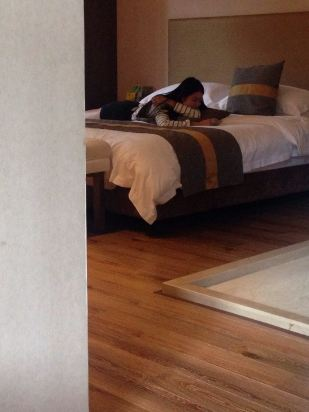 文成天鹅堡养生度假酒店