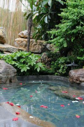 0分温泉标准房2016年05月入住 家庭亲子 一直想去泡温泉,听说温泉心景