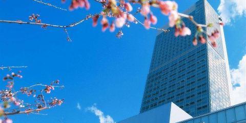 中國東方航空公司+新瀉日航酒店