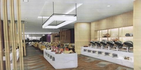土耳其航空迪拜龍城普瑞米爾酒店