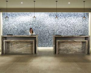 香港-聖地亞哥自由行 日本航空公司聖迭戈米申山谷希爾頓酒店