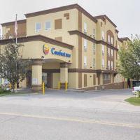 大學舒適套房酒店(Comfort Inn and Suites University)