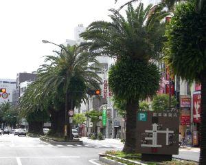 香港-高知自由行 全日空航空高知宮崎富豪酒店
