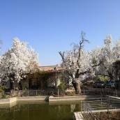 青城古鎮賽福特農莊