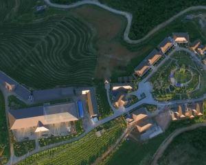 香港-臨滄自由行 中國東方航空公司-雙江雲頂築巢茶莊園酒店